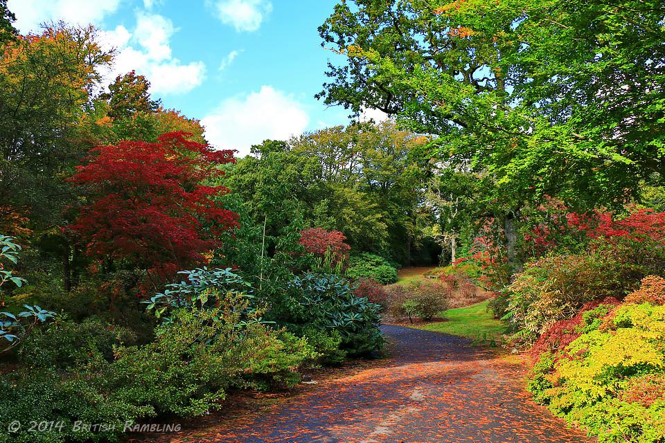 Сады Эксбери, графство Хэмпшир