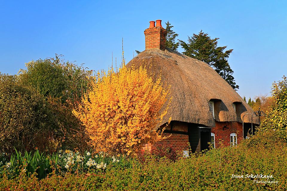 Дом с соломенной крышей в деревне Микелмерш, графство Хэмпшир, Англия