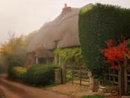 Раннее утро в деревне Микелмерш, графство Хэмпшир, Англия
