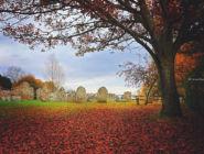 Деревня Микелмерш, графство Хэмпшир, Англия