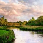 Река Тест, графство Хэмпшир, Англия